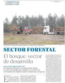 ABC sector forestal 1